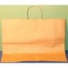 16X6X12 Kraft Shopping Bag 250/Case
