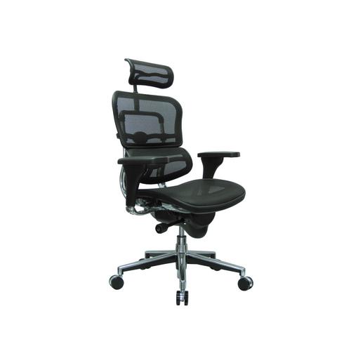 Ergohuman Ergonomic Office Chair