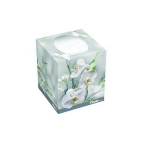 Facial Tissue in Decorative Box