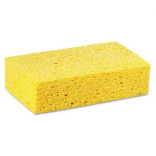 Large Cellulos Sponge