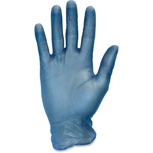 Blue Vinyl Gloves, Powder FREE, Latex FREE - Large, 100/bx