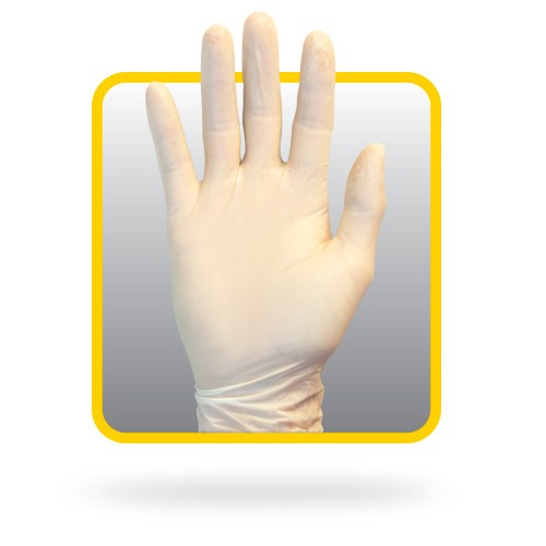 Latex Gloves, Powder Free - Large