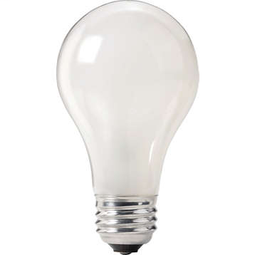 Incandescent Lamps & Bulbs