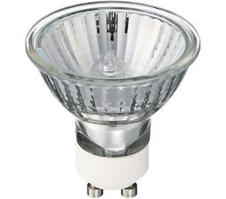 Halogen Lamps & Bulbs
