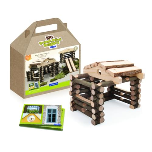 Big Branch Block Builders, 125 Pieces and 10 Inspiration Cards